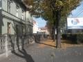 La Sibiu in ziua votului  Strada  a facut politica