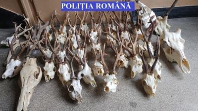 © Poliția Română