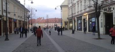 © În imagine, un câine de talie mare, lăsat liber în centrul Sibiului.