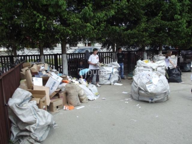 Peste 2,5 tone de hârtie reciclate prin MAREA COLECTARE