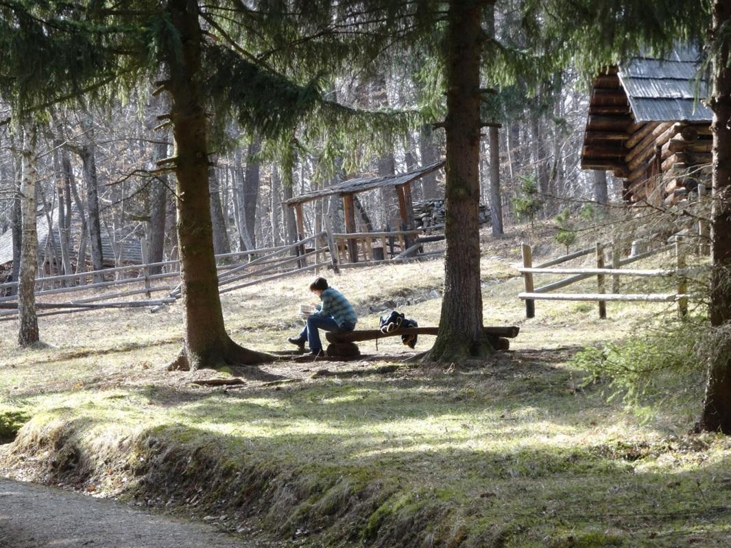Dumbrava Sibiului: Muzeul în Aer Liber, un foişor de ispite în care am auzit Iarna cum suspină!