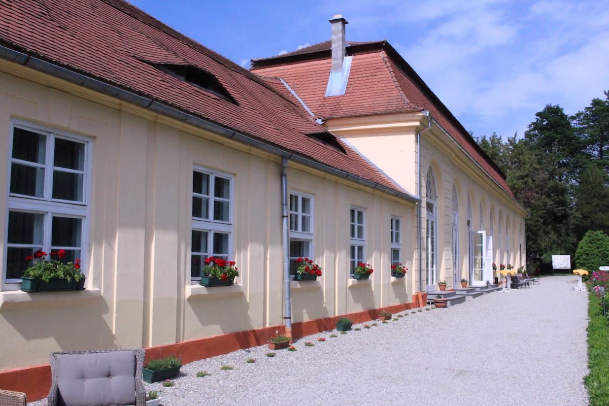 Vară plină pentru copii și tineri, la Palatul Brukenthal
