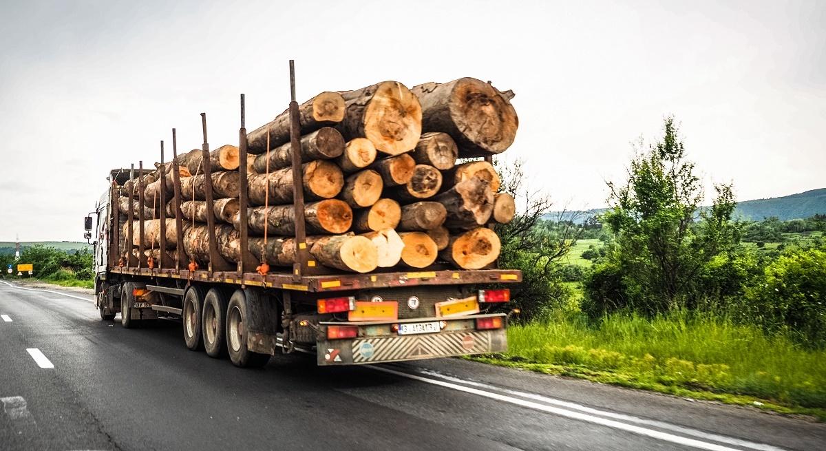 Sibienii care îşi încălzesc locuința cu lemne trebuie să comunice Primăriei necesarul pentru iarnă