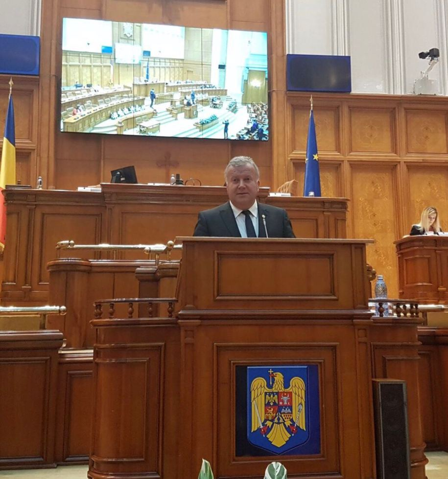 Constantin Şovăială de la tribuna Parlamentului: