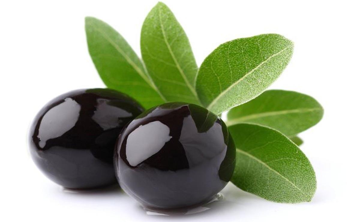 Medicina naturistă: Frunzele de măslin