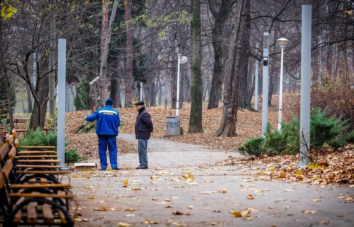 """FOTO. Parcul Sub Arini, """"împodobit"""" de Sărbători cu noul sistem de iluminat. Leduri colorate, camere video și internet"""