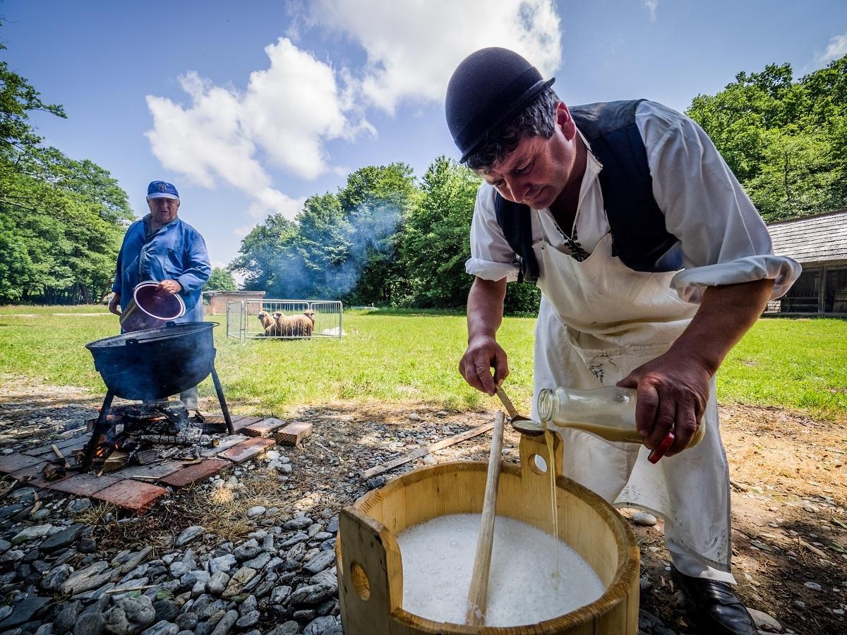 ''Alege oaia'' vine la Sibiu. Cu degustări gratuite de mâncăruri din carne de oaie