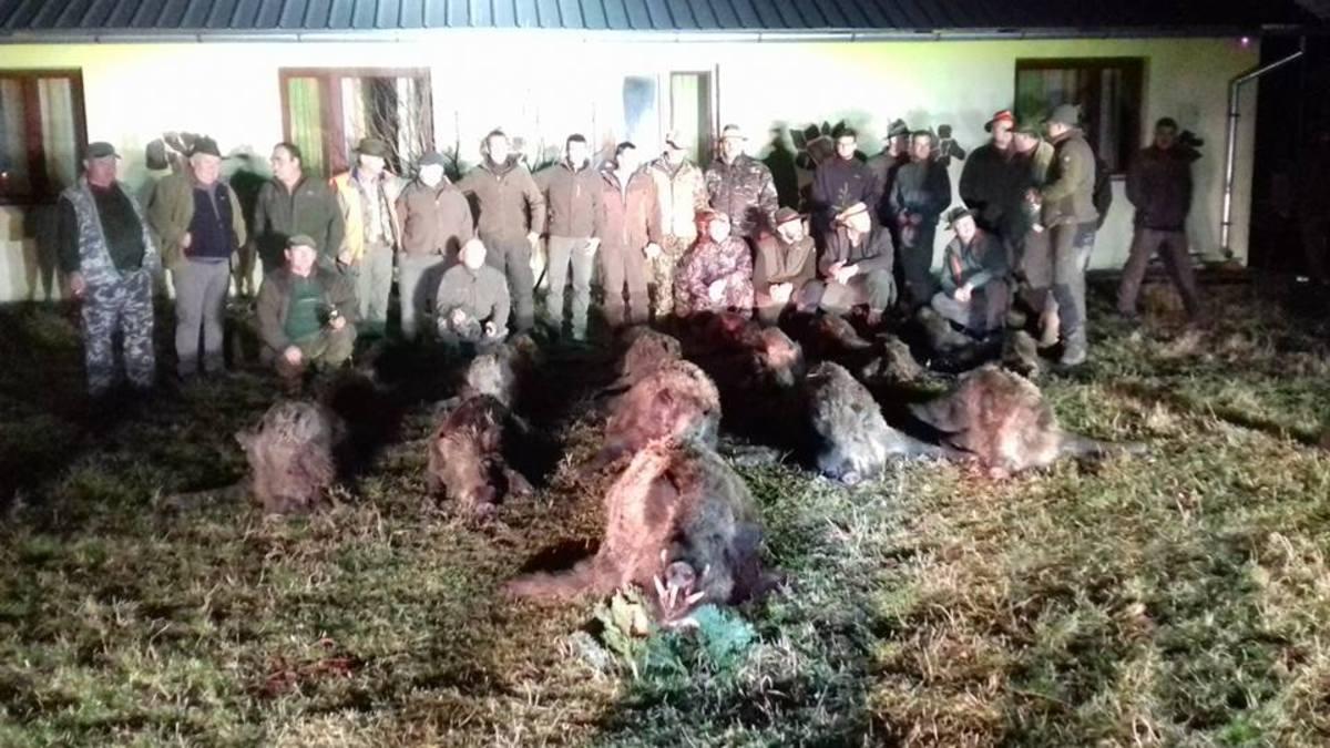 FOTO: Arme letale, craniu de urs și trofee de cerb și căprior, dar și carne de vânat, găsite în casa unui bărbat din Dumbrăveni. A fost arestat