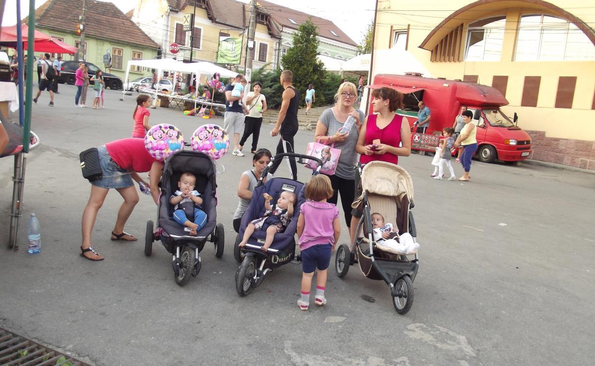 Oraşul Avrig va avea o creşă pentru 70 de copii