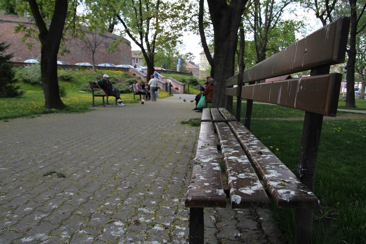 PREMIERĂ. Ciorile din Sibiu, alungate cu trei aparate acustice. Primăria le-a instalat în Sub Arini, Tineretului şi parcul ASTRA