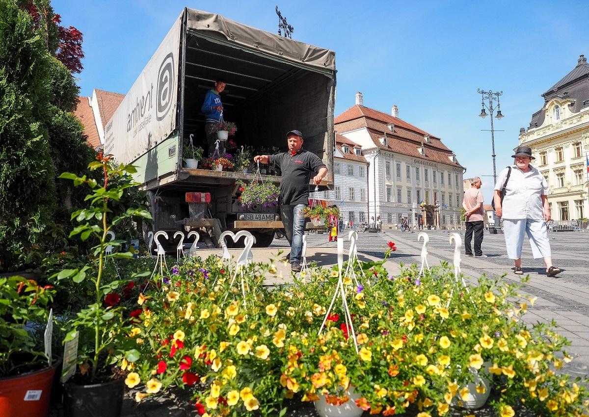 Festivalul Grădinilor înfloreşte în Piaţa Mare