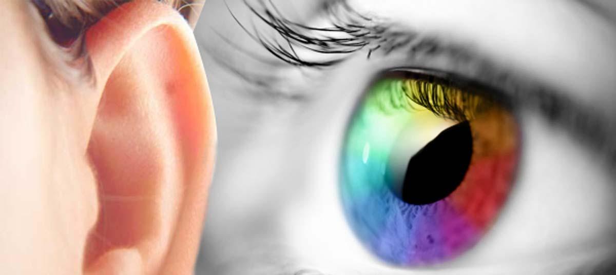 Ochiul şi urechea: