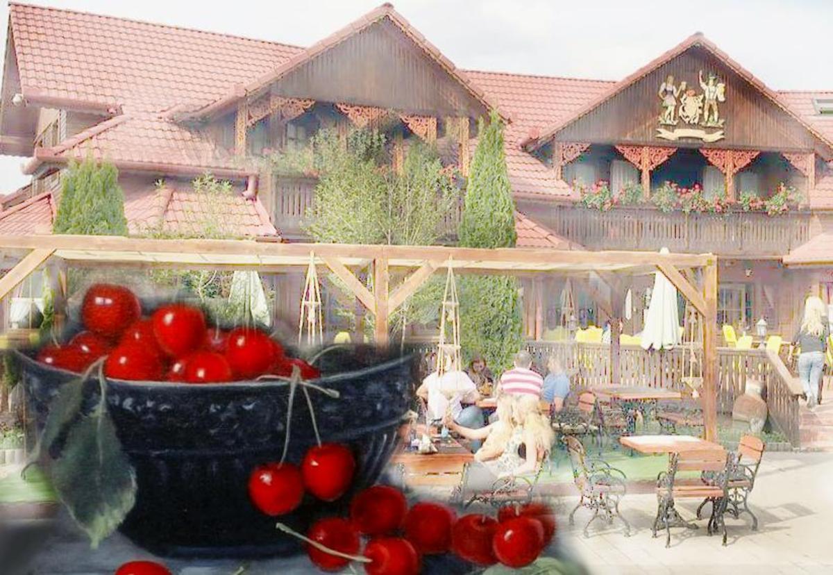 """Cireșele din Cisnădioara  au """"un gust de poveste"""""""