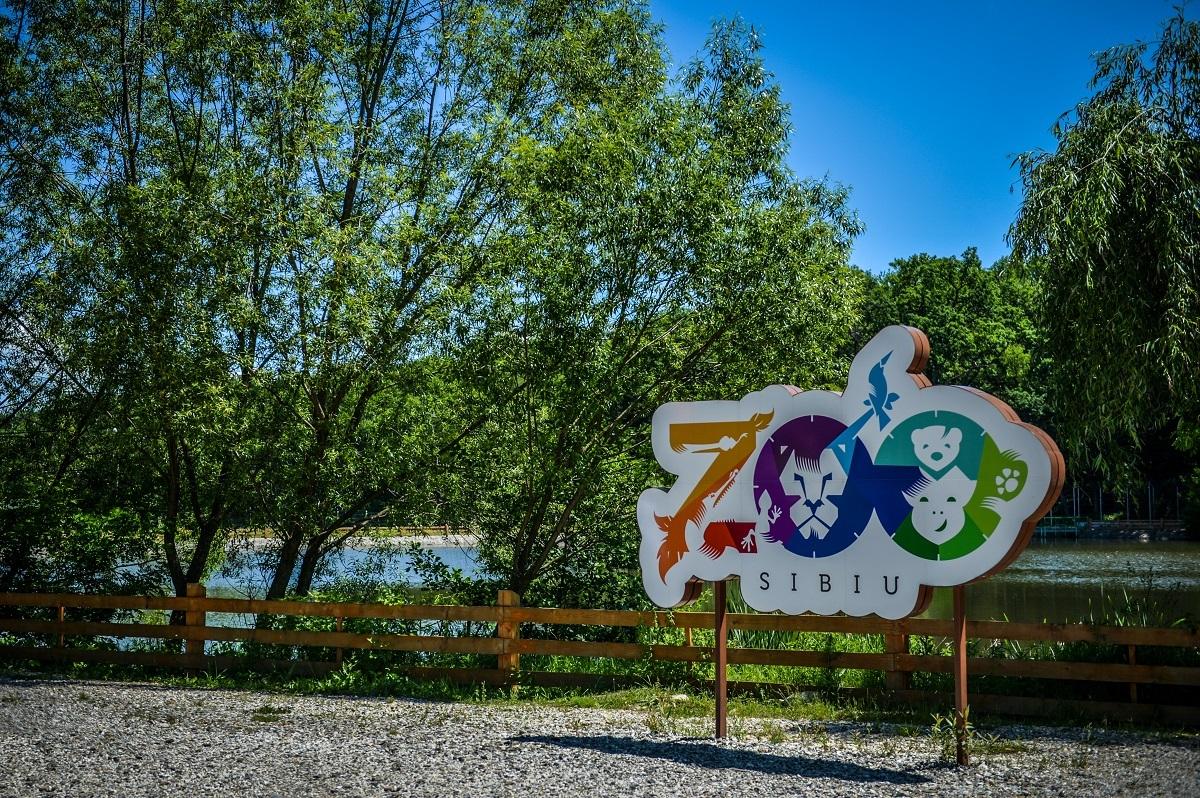 Zoo Sibiu deschide Ferma animalelor. Copiii vor putea interacționa și hrăni animalele domestice