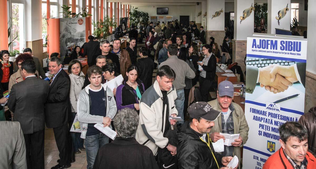 1.379 locuri de muncă vacante, în judeţul Sibiu